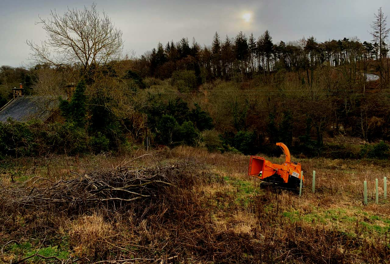 Photo of Tracked Timberwolf Woodchipper next to Brash in Woodland
